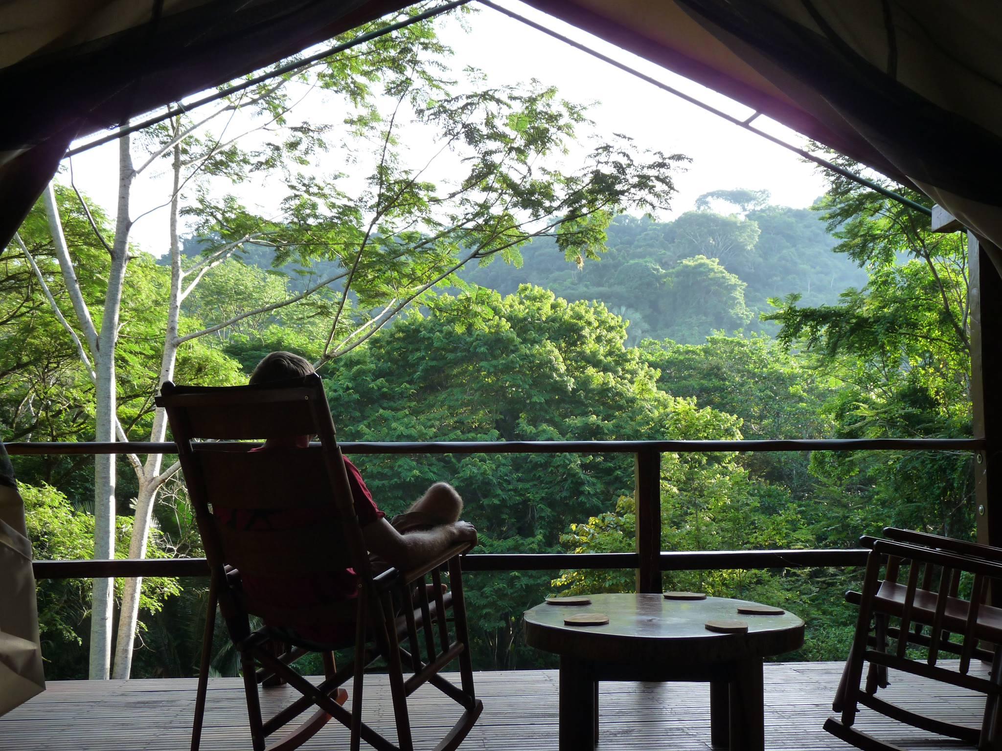 Wondrous Shade Tree Rainforest Glamping Download Free Architecture Designs Scobabritishbridgeorg